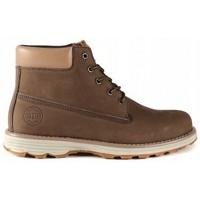 Sapatos Homem Botas baixas Big Star EE174229 Castanho