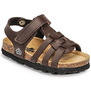 Sapatos Rapaz Sandálias Citrouille et Compagnie JANISOL Castanho / Escuro