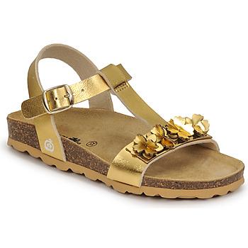 Sapatos Rapariga Sandálias Citrouille et Compagnie KAPIBA Ouro