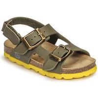 Sapatos Rapaz Sandálias Citrouille et Compagnie KELATU Cáqui