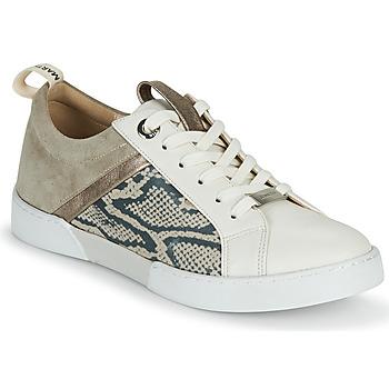 Sapatos Rapariga Sapatilhas JB Martin GELATO Cinza / Branco