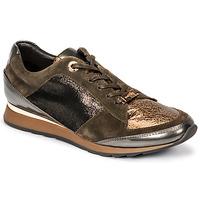Sapatos Mulher Sapatilhas JB Martin VILNES H18 Cáqui