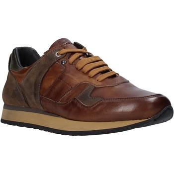Sapatos Homem Sapatilhas Exton 591 Castanho