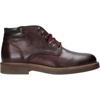 Sapatos Homem Botas baixas Exton 852 Outras