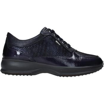 Sapatos Mulher Sapatilhas IgI&CO 6163722 Azul