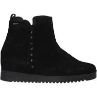 Sapatos Mulher Botas baixas IgI&CO 6155033 Preto