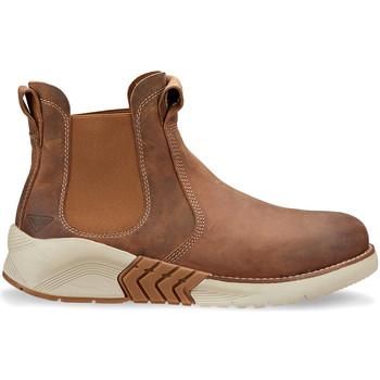 Sapatos Homem Botas baixas Docksteps DSM105601 Castanho