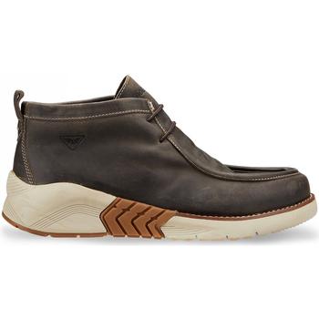 Sapatos Homem Botas baixas Docksteps DSM105803 Castanho