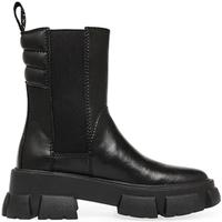 Sapatos Mulher Botas baixas Steve Madden SMSTRANSAM-BLK Preto