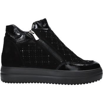 Sapatos Mulher Botas baixas IgI&CO 6155800 Preto