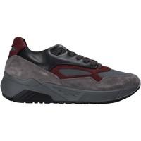 Sapatos Homem Sapatilhas IgI&CO 6142522 Cinzento