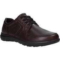 Sapatos Homem Sapatos Enval 6216222 Castanho