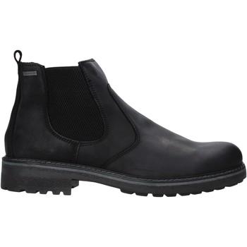 Sapatos Homem Botas baixas IgI&CO 6123000 Preto