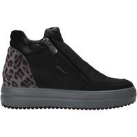 Sapatos Mulher Botas baixas IgI&CO 6155766 Preto