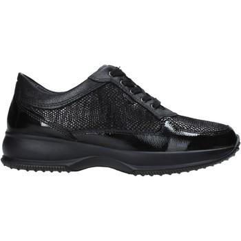 Sapatos Mulher Sapatilhas IgI&CO 6163700 Preto