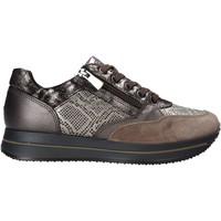 Sapatos Mulher Sapatilhas IgI&CO 6165011 Cinzento
