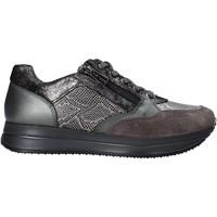 Sapatos Mulher Sapatilhas IgI&CO 6165022 Cinzento
