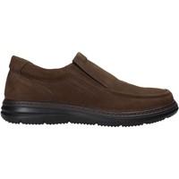 Sapatos Homem Slip on Enval 6209222 Castanho