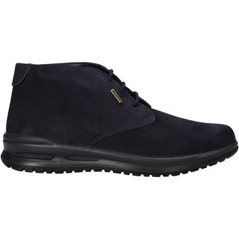 Sapatos Homem Botas baixas Valleverde VL53823 Azul