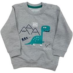 Textil Criança Sweats Losan 027-6652AL Cinzento