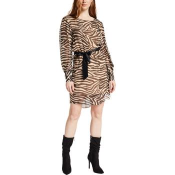 Textil Mulher Vestidos curtos Gaudi 021FD15029 Castanho
