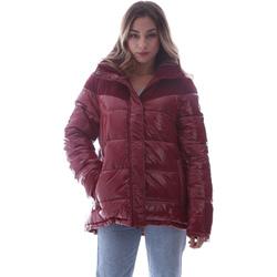 Textil Mulher Quispos Invicta 4432435/D Vermelho