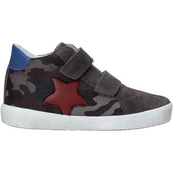 Sapatos Criança Sapatilhas Naturino 2015367 14 Preto