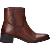 Sapatos Mulher Botas baixas Café Noir XV123 Castanho
