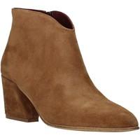 Sapatos Mulher Botins Bueno Shoes 20WR5102 Castanho