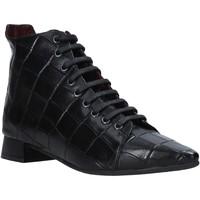 Sapatos Mulher Botas baixas Bueno Shoes 20WR3002 Preto