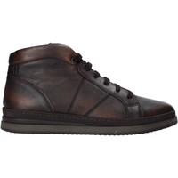Sapatos Homem Botas baixas IgI&CO 6135655 Castanho