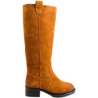 Sapatos Mulher Botas Apepazza F0BEATRIX02/SPL Castanho