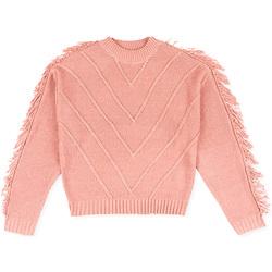 Textil Criança camisolas Losan 024-5002AL Rosa