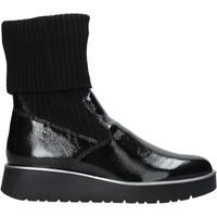 Sapatos Mulher Botas baixas IgI&CO 6151100 Preto