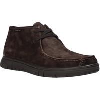 Sapatos Homem Botas baixas Enval 6220822 Castanho