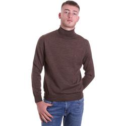 Textil Homem camisolas Navigare NV11006 33 Castanho