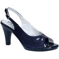 Sapatos Mulher Escarpim Grace Shoes E8174 Azul