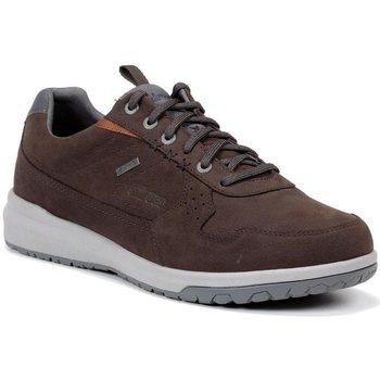Sapatos Homem Sapatilhas Chiruca Zapatos  Metropolitan 12 Gore-Tex Castanho