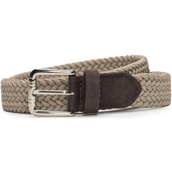 Acessórios Mulher Cinto Nae Vegan Shoes BeltVila_Camel bege