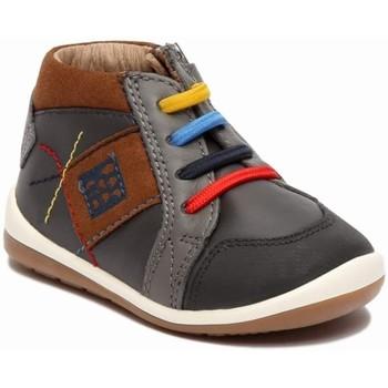 Sapatos Rapaz Botas baixas Garvalin