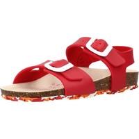 Sapatos Rapariga Sandálias Garvalin 202663 Vermelho