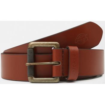 Acessórios Homem Cinto Dickies South shore leather belt Castanho