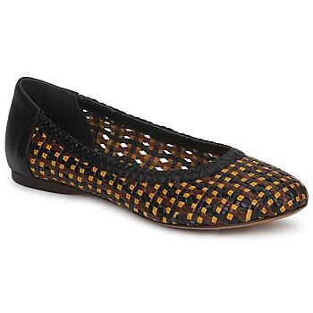Sapatos Mulher Sabrinas Stéphane Kelian WHITNEY Castanho / Preto