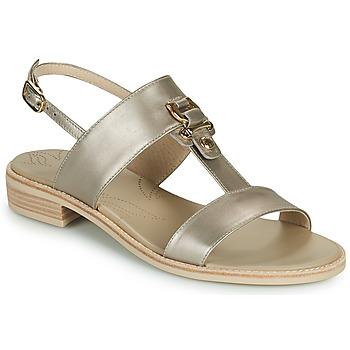 Sapatos Mulher Sandálias NeroGiardini PLUIE Ouro