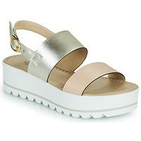 Sapatos Mulher Sandálias NeroGiardini SABRI Branco / Ouro