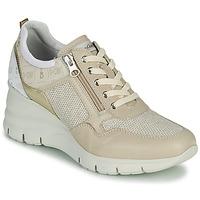 Sapatos Mulher Sapatilhas NeroGiardini FLORA Bege / Ouro
