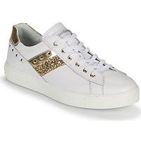 Sapatos Mulher Sapatilhas NeroGiardini DRILLA Branco / Ouro