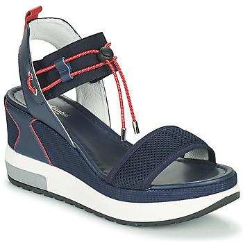 Sapatos Mulher Sandálias NeroGiardini CAMINO Marinho / Vermelho