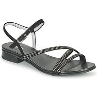 Sapatos Mulher Sandálias NeroGiardini TEDDY Preto