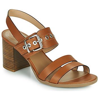 Sapatos Mulher Sandálias NeroGiardini GHILLO Conhaque